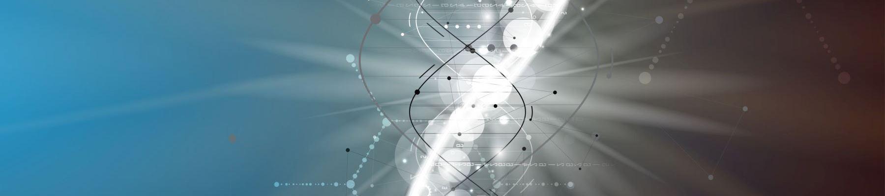 Seit vielen Jahren arbeiten wir<br/> an der Systematisierung aller Daten<br/>im Gebäudelebenszyklus
